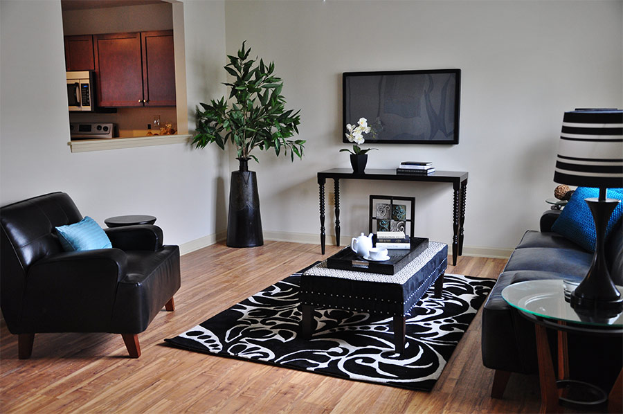 Spacious Living Room at Park Terrace - Laurel Street